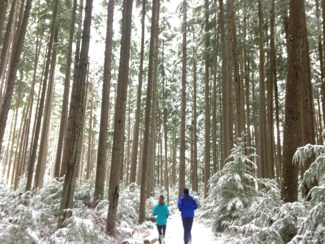 Wollschlager and a running buddy on a snowy day in Redmond.