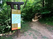 20170716_IC King Park_Trail Running2