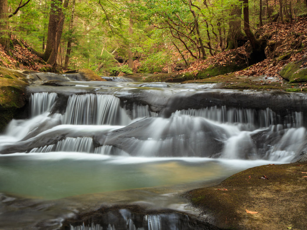 Quillen Creek, in the Bankhead National Forest, is just one of many highlights along the in-the-works Alabama Trail.