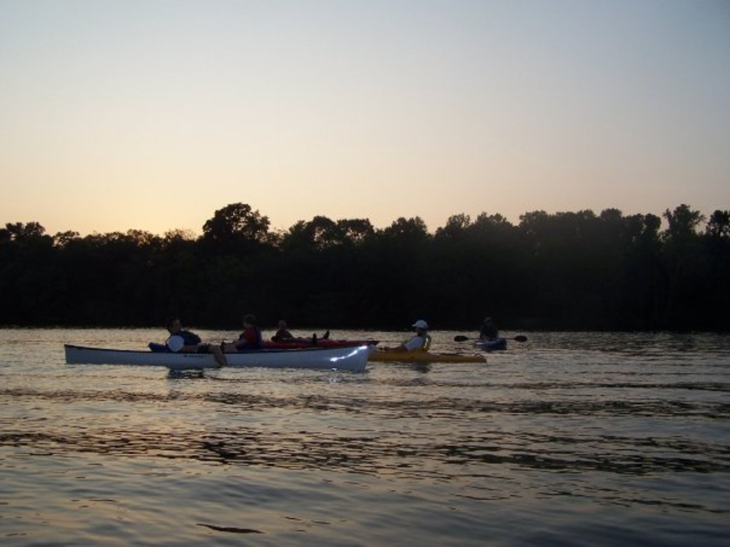 An evening paddle on the Catawba is perfect for wildlife viewing