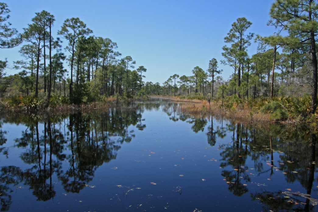 The refuge protects one of Alabama's last remaining undisturbed coastal barrier habitats.