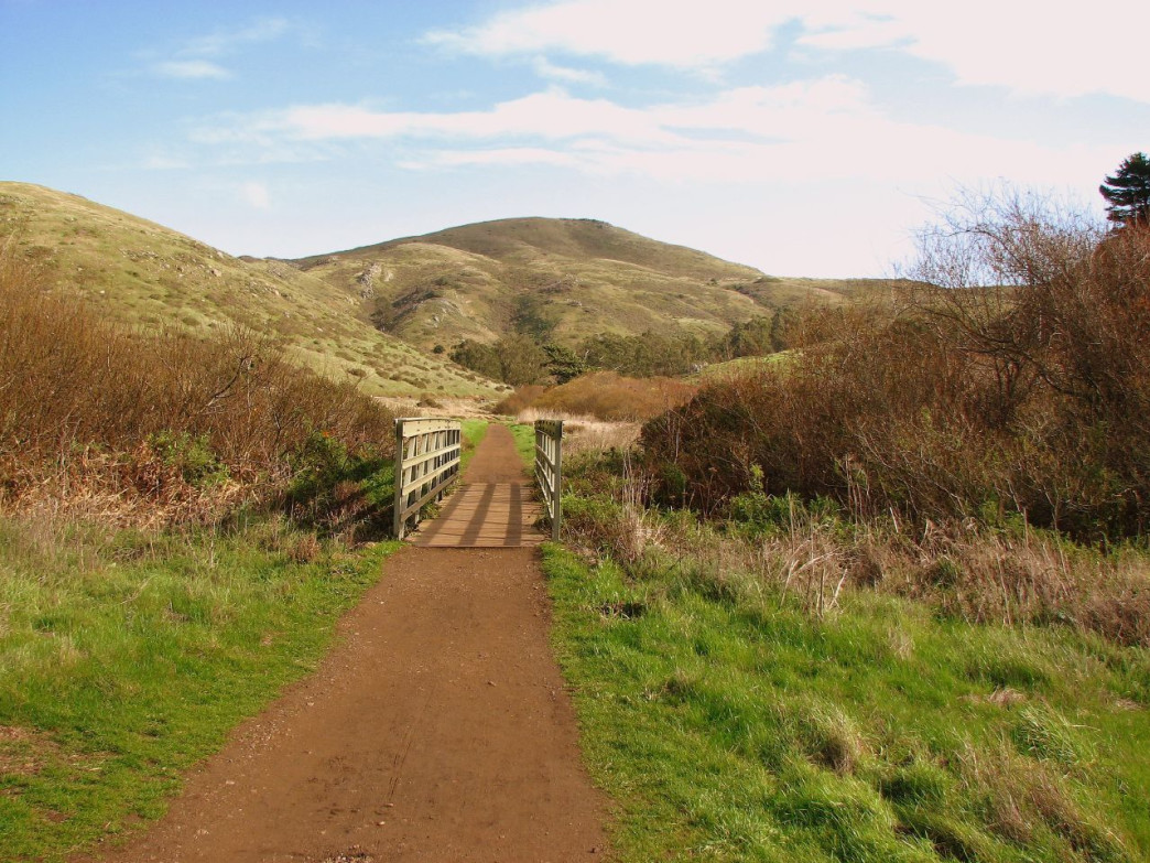 The Tennessee Valley Trail is a beloved route among trail runners.