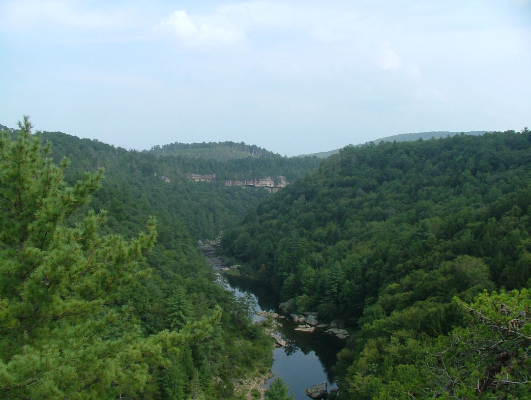 There's a great view of Clear Creek from Lilly Bluff.