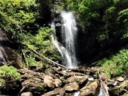 Image for Anna Ruby Falls