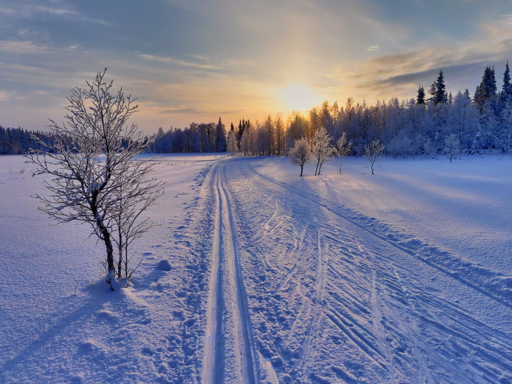 Cross country skiing offers a lung-busting workout and divine solitude.