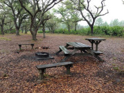 Image for Hal Scott Regional Preserve Backpacking/ Camping