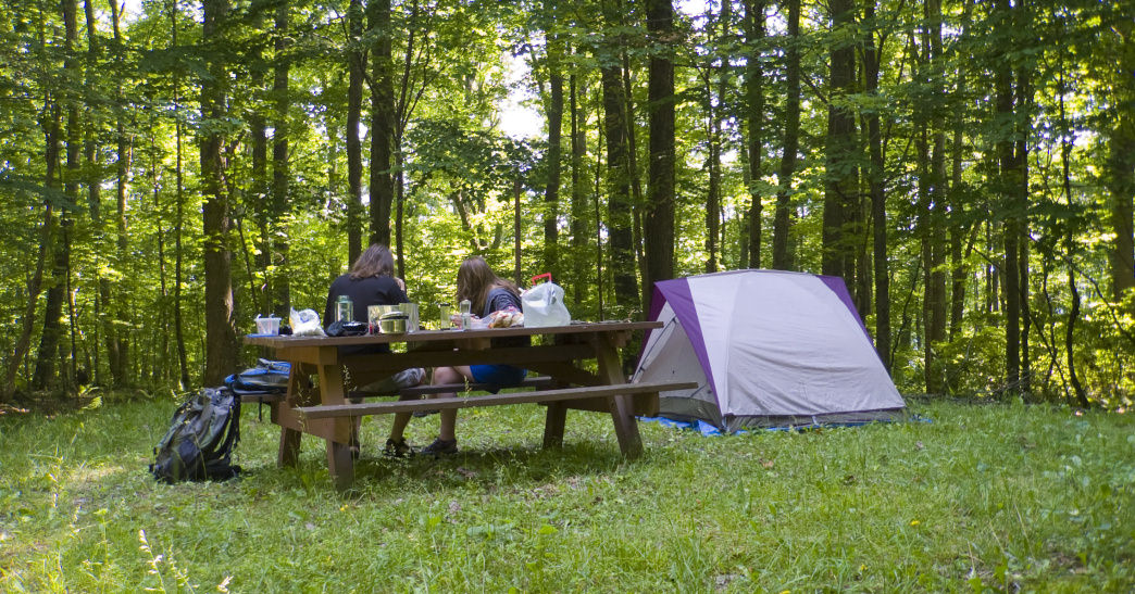 Primitive or backcountry camping in the Monongahela National Forest is a sure-fire way to get away from it all.