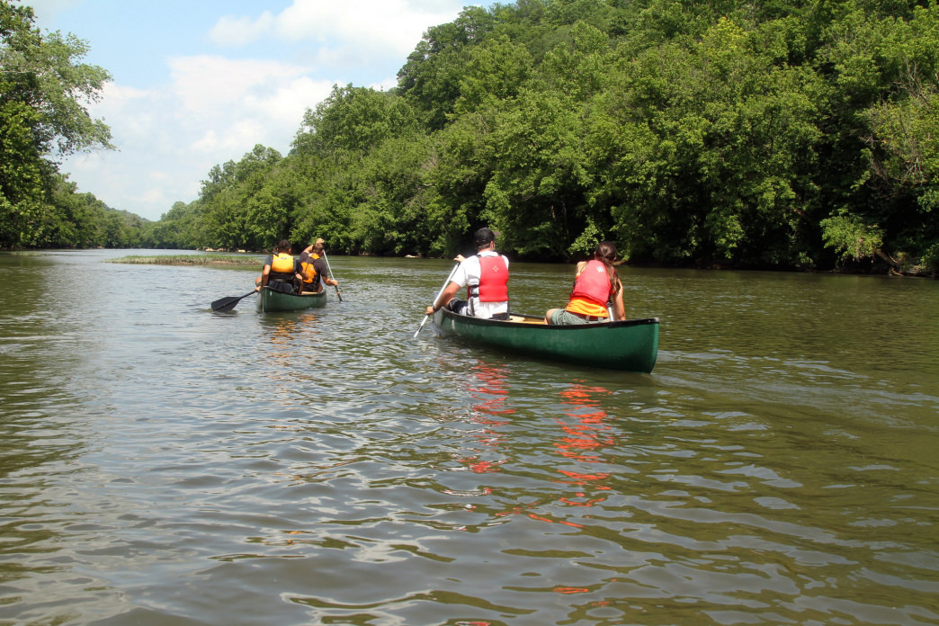 Paddling on the Clinch River, which is filled with diverse plant and animal life.