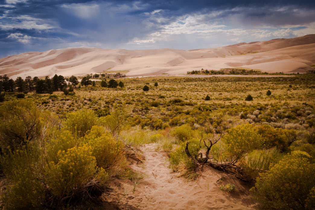 The Great Sand Dunes National Park features an amazing mix of sand dunes and alpine peaks.