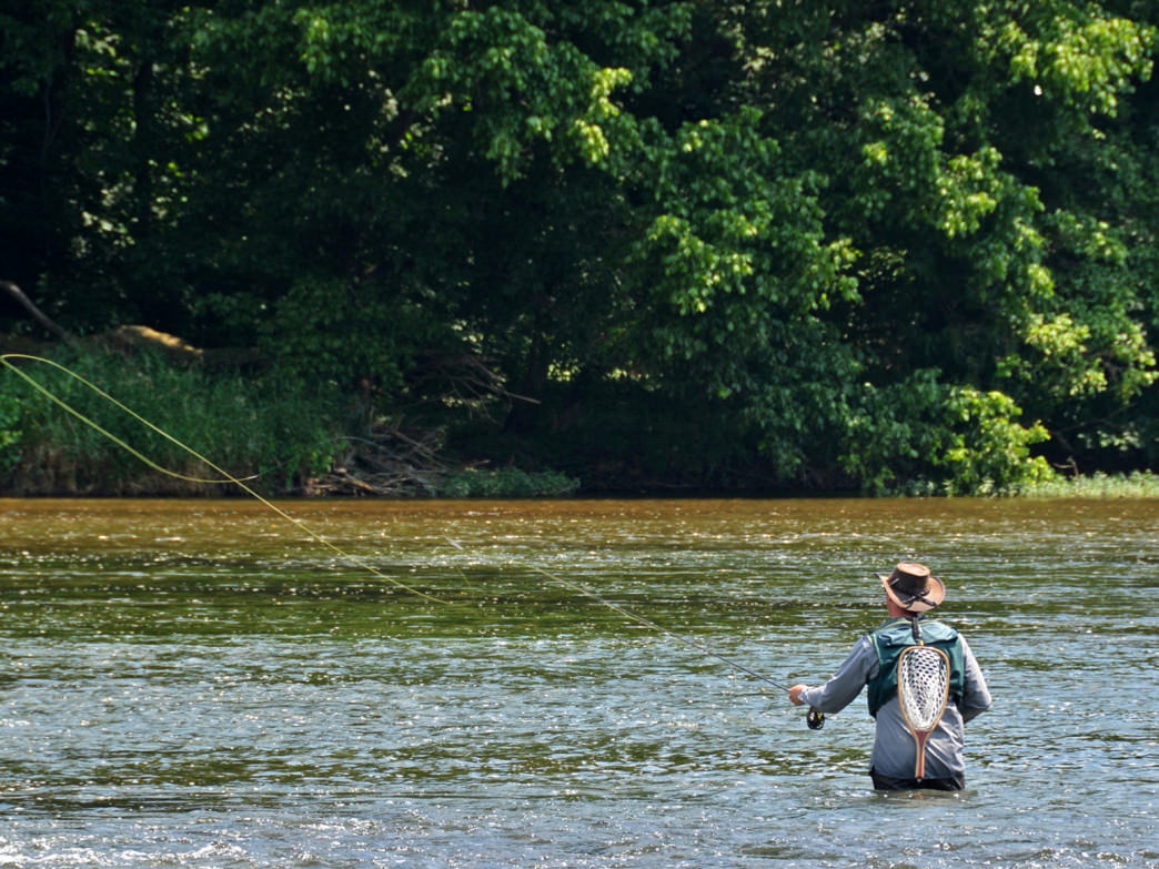 Anglers will find plenty of options when it comes to fly fishing in southwest Virginia.