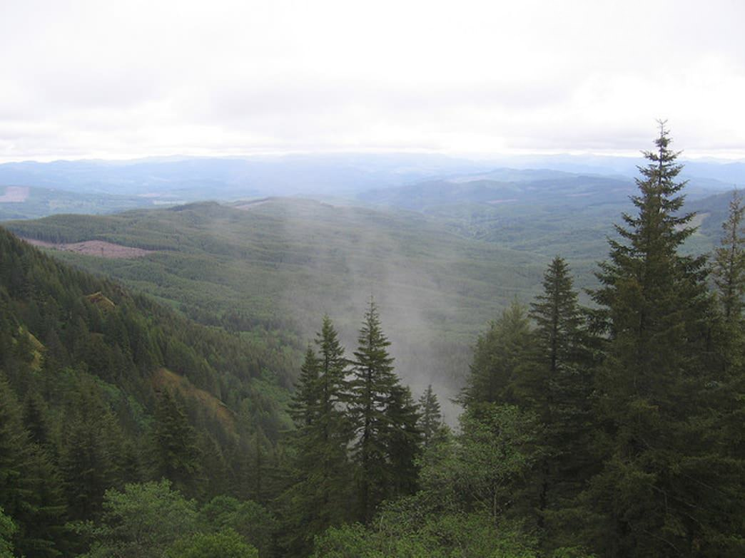Saddle Mountain offers panoramic views on clear days.