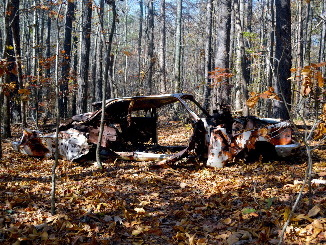The abandoned car on Gold Branch.