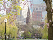 Image for Boston Common