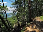 20170718_Tennessee_Chattanooga_Bluff Trail-06
