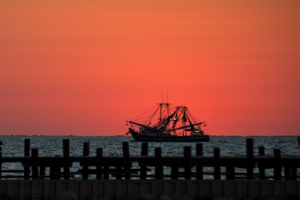 Fresh seafood is a staple on the Alabama Gulf Coast.