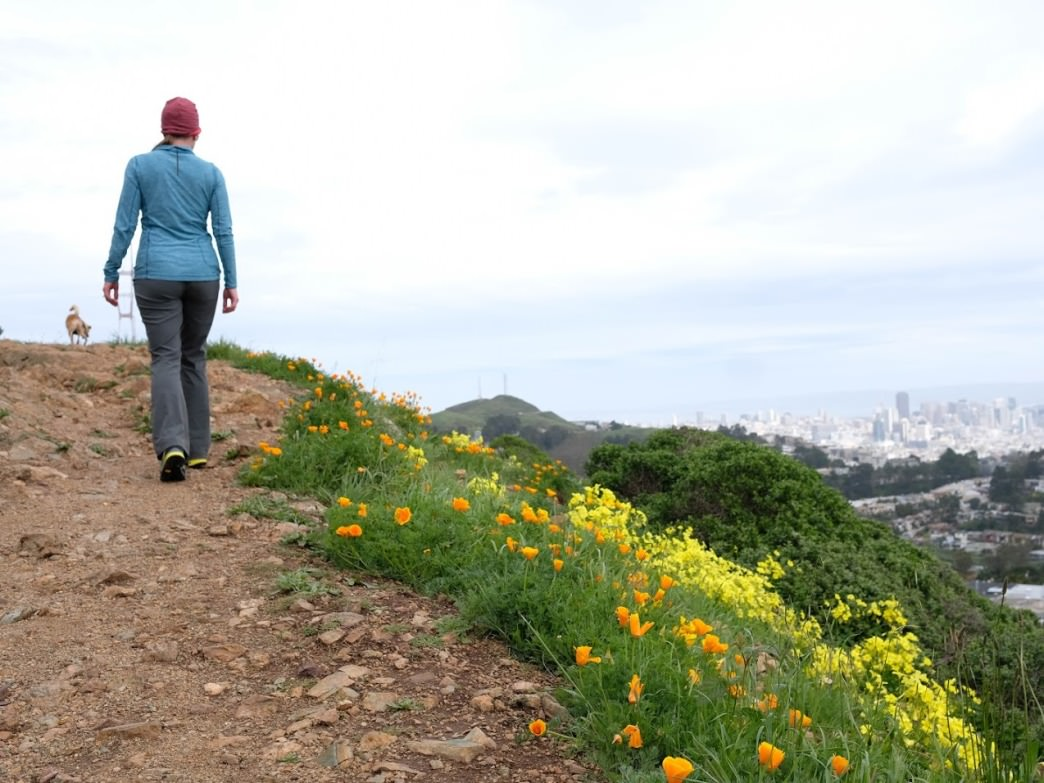 Hiking in San Francisco may spoil you forever.