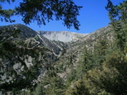 Image for Mt. Baldy Rock Garden