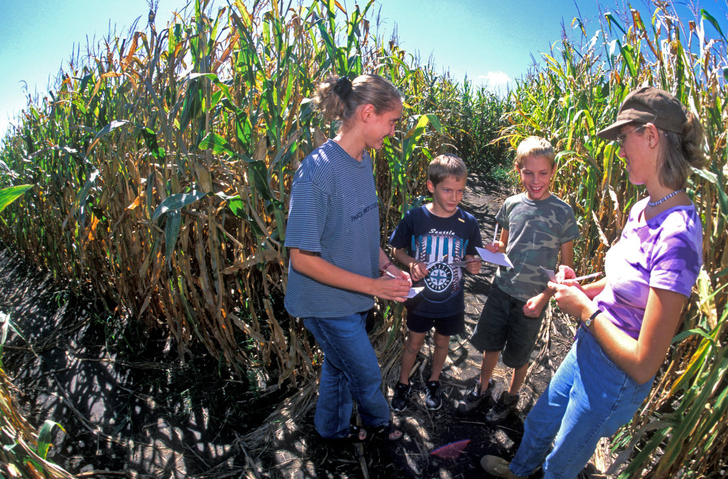 The Heartland Country Corn Maze is a fun family experience.