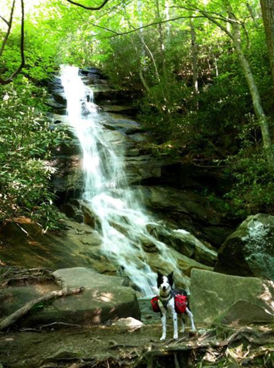 Foothills Trail Through Gorges State Park Backpacking