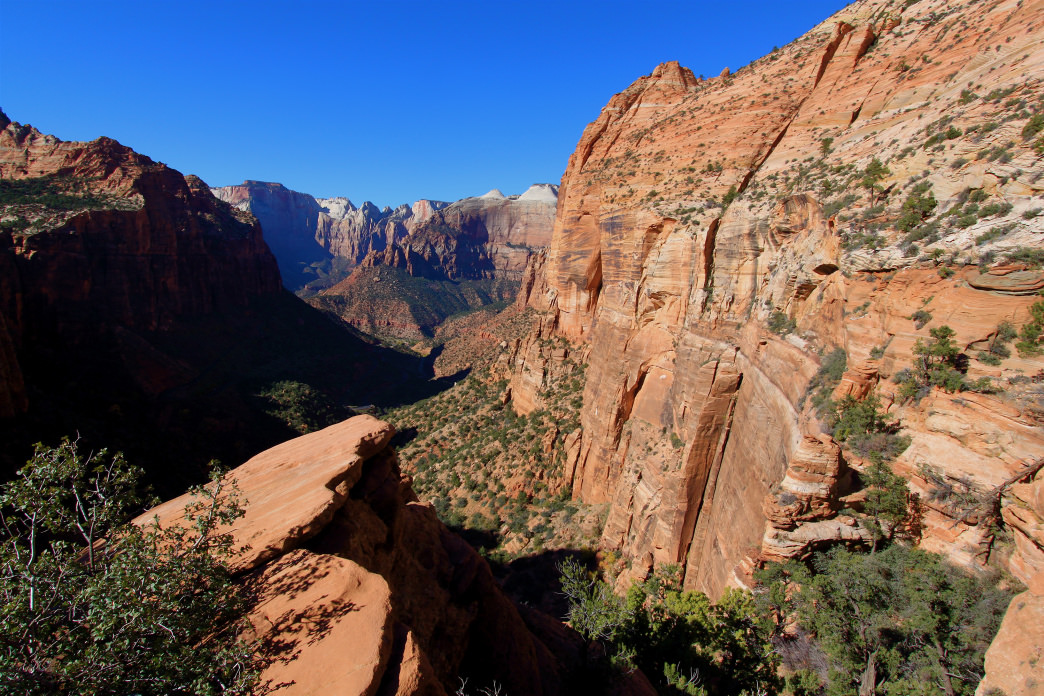 The Canyon Overlook Trail is great for those looking for a short, easy hike with a great view.