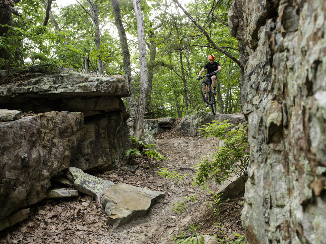 A Guide To The Best Mountain Biking In Tennessee
