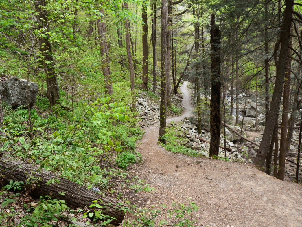 Escape the crowds by continuing your waterfall hike down the Sitton's Gulch Trail.