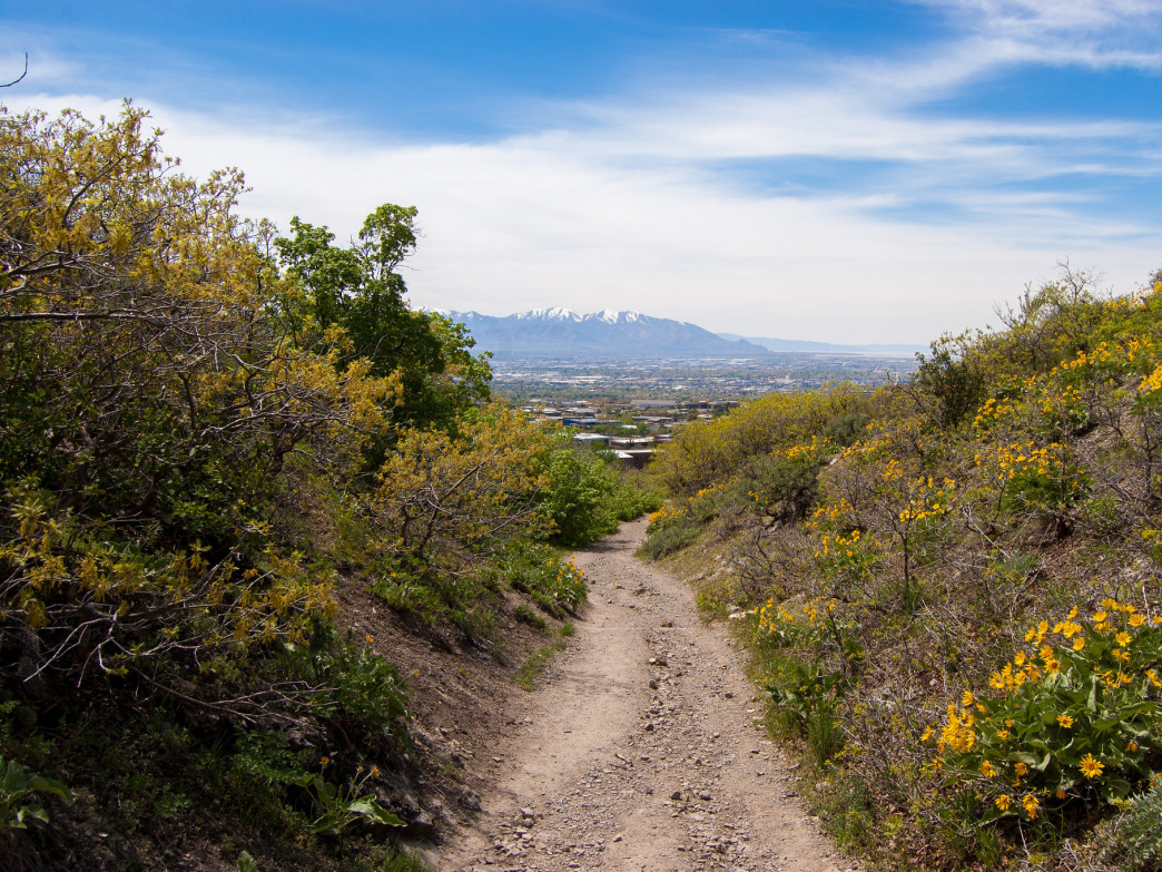 Best Salt Lake City Trails For Spring Excursions