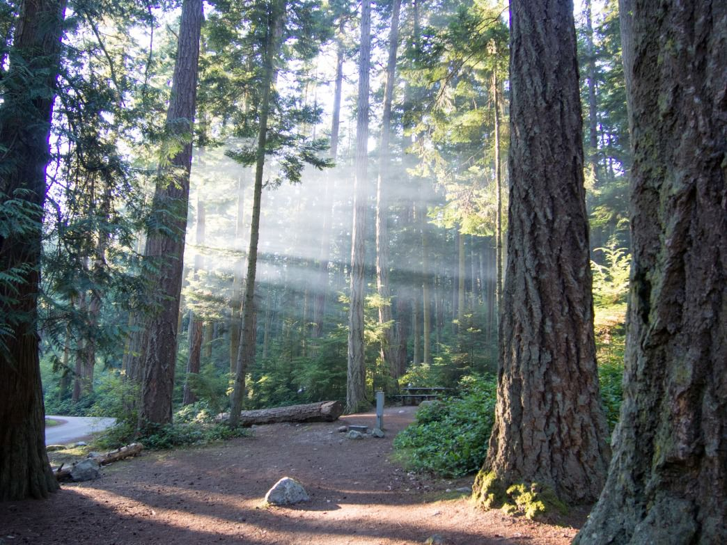 An Insider S Guide To The Best Camping Spots In Washington