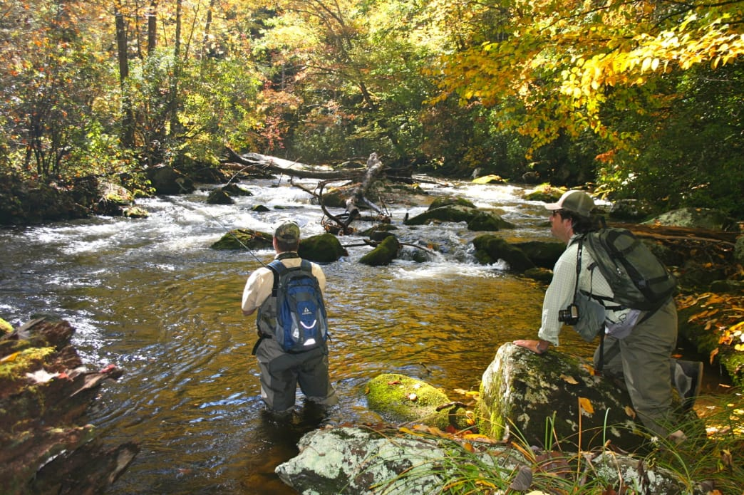 Fly fishermen in Hazel Creek, great Smoky Mountain National Park.