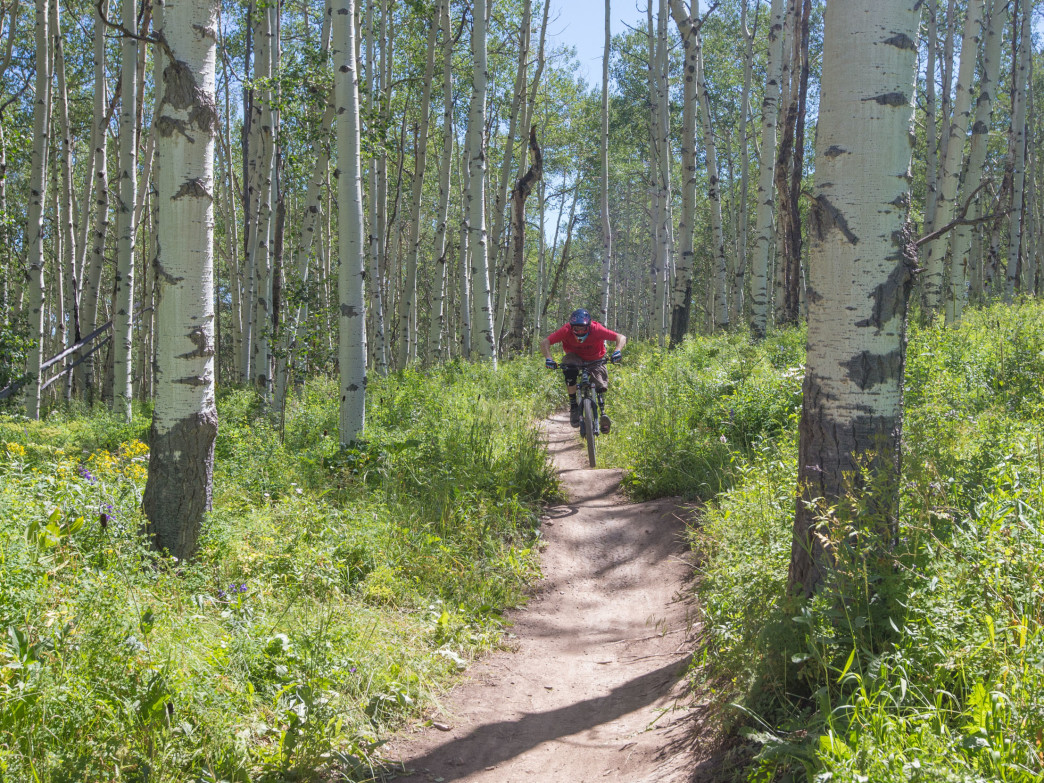 Snowmass Bike Park features green, blue, and black trails for all levels.