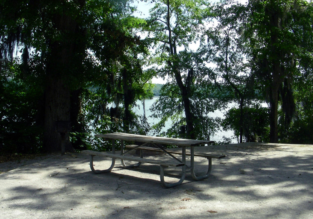 The tent campsites at Isaac Creek are spacious and many have an amazing view of either Claiborne Lake or Isaac Creek.