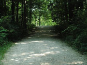 Image for Waterfall Glen Forest Preserve - Mountain Biking