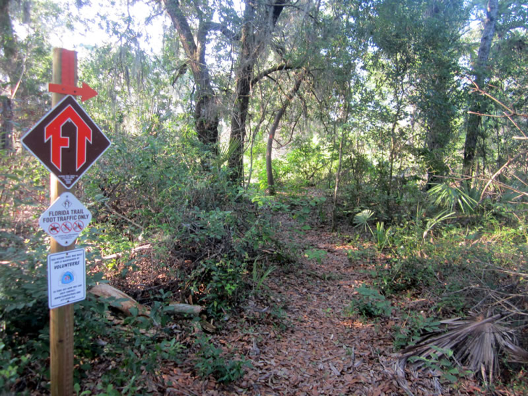 Trail marker in the Central Region of the Florida Trail
