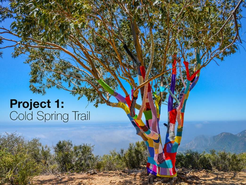 The eucalyptus tree towards the top of the Cold Spring trail in the foothills of Santa Barbara was Steve Duneier's first yarnbomb.