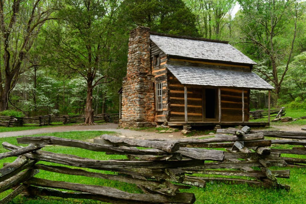 John Oliver Cabin in Cades Cove with Dogwood Trees