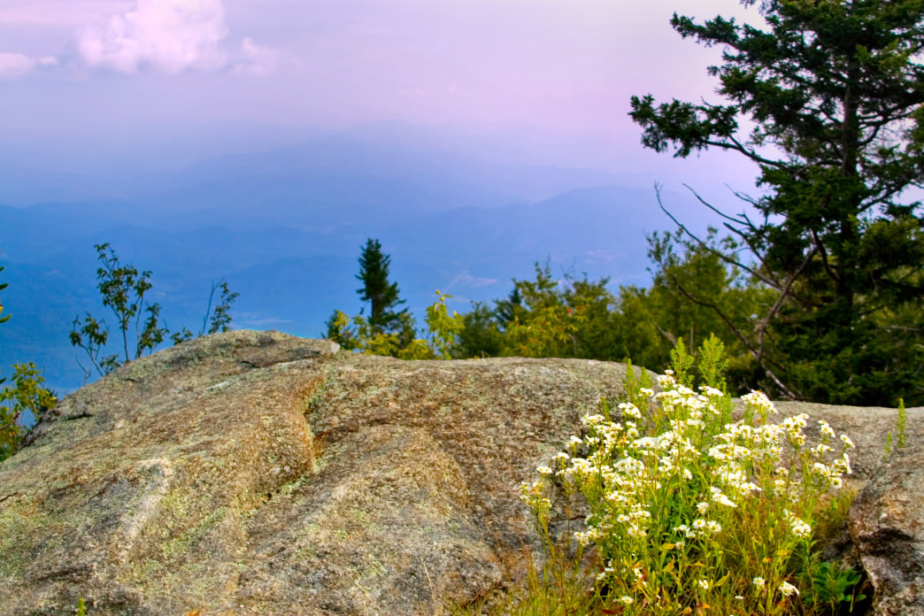 Hit the Blackrock Trail for a moderate 3-mile loop to Blackrock's summit at 4,200 feet.