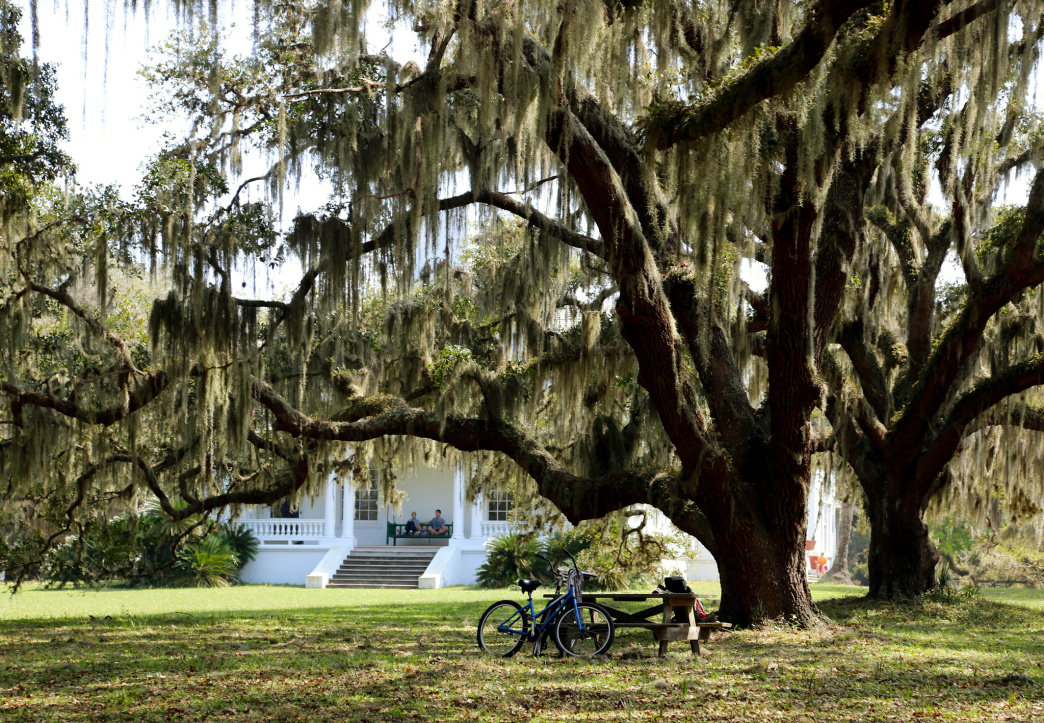 An abandoned mansion tells a timeless tale of man and nature on Cumberland Island.