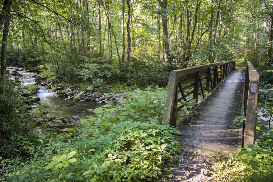 "The wooden walkway over the Little River has been nicknamed the ""Goshen Gate Bridge"".     Margie Hunter"