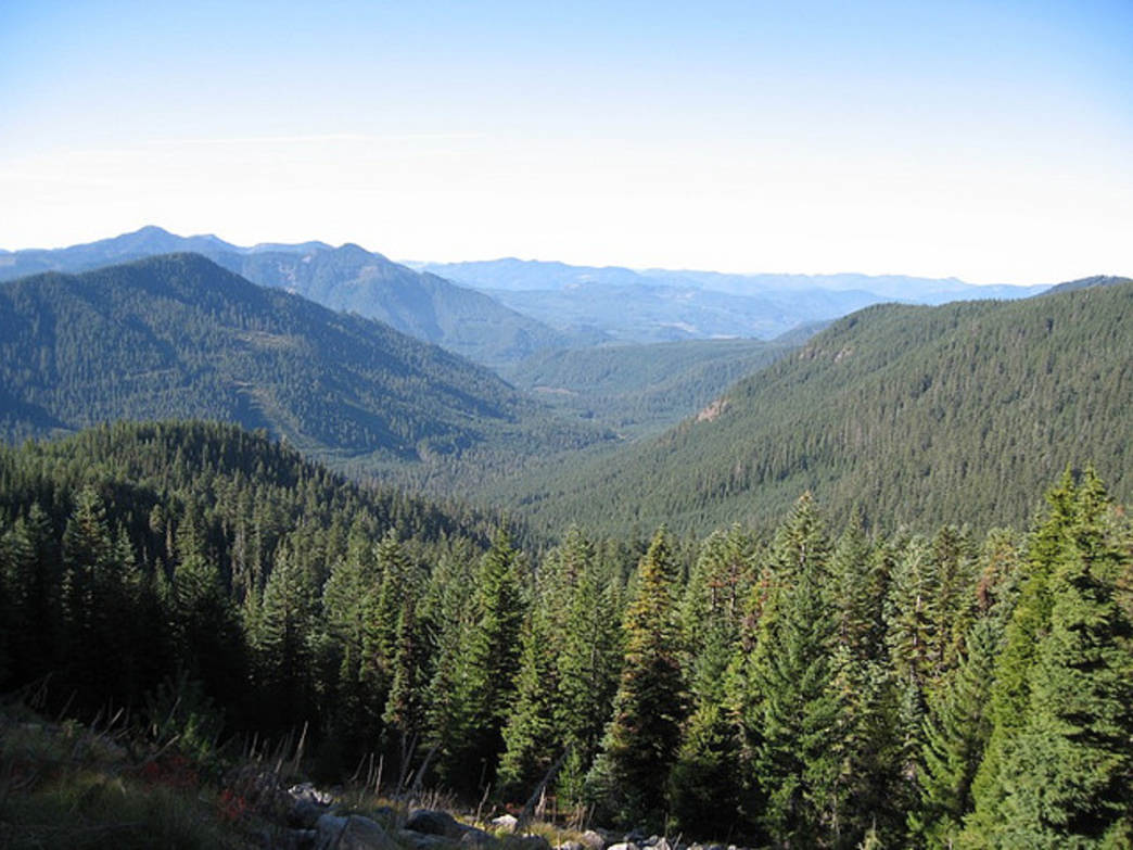 The Jefferson Park trail straddles the Oregon Cascades between the western and eastern parts of the state.