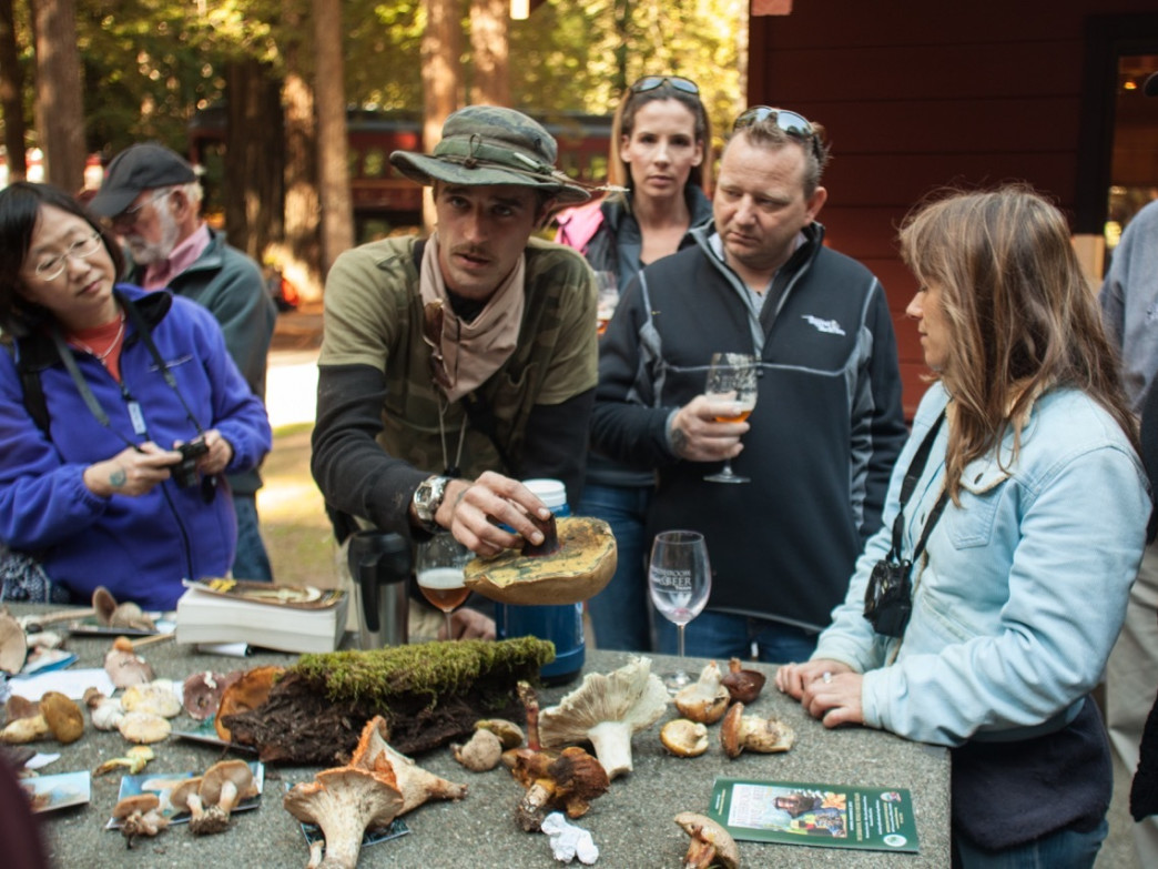 Learn the finer points of fungi foraging at the Mendocino Mushroom, Wine & Beer Festival.