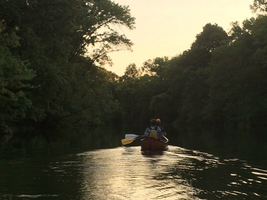 An evening summer paddle along the emerald waters of Lookout Creek