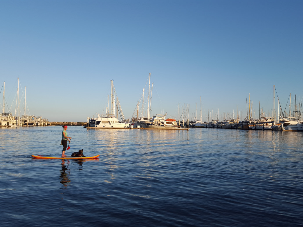 Stand-up paddleboarding and kayaking have become popular pursuits in Santa Barbara Harbor.