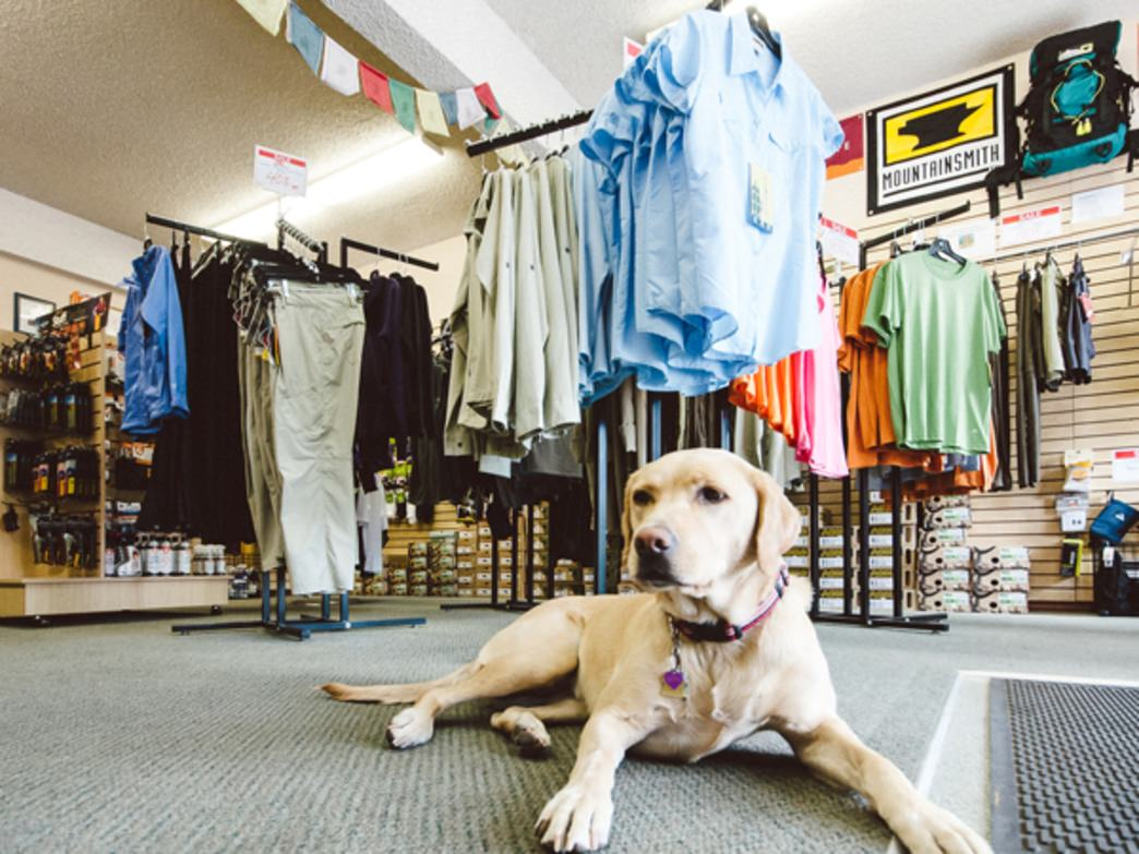 Shop dog, Bodhi, is always ready to greet Lake of the Sky Outfitter customers.