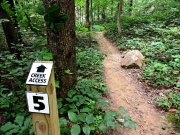 20170621_Tennessee_Chattanooga_North Chick Blue Hole_Hiking2