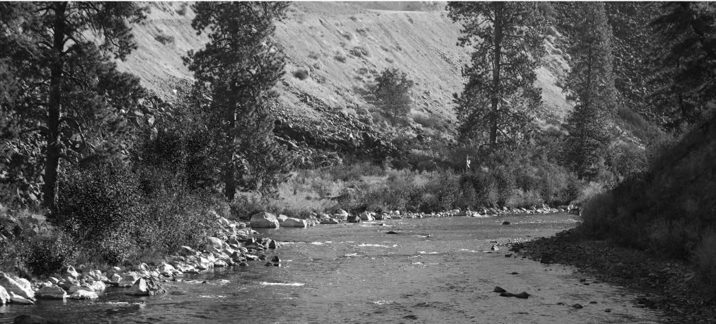 South Fork of the Boise River - White Water Paddling