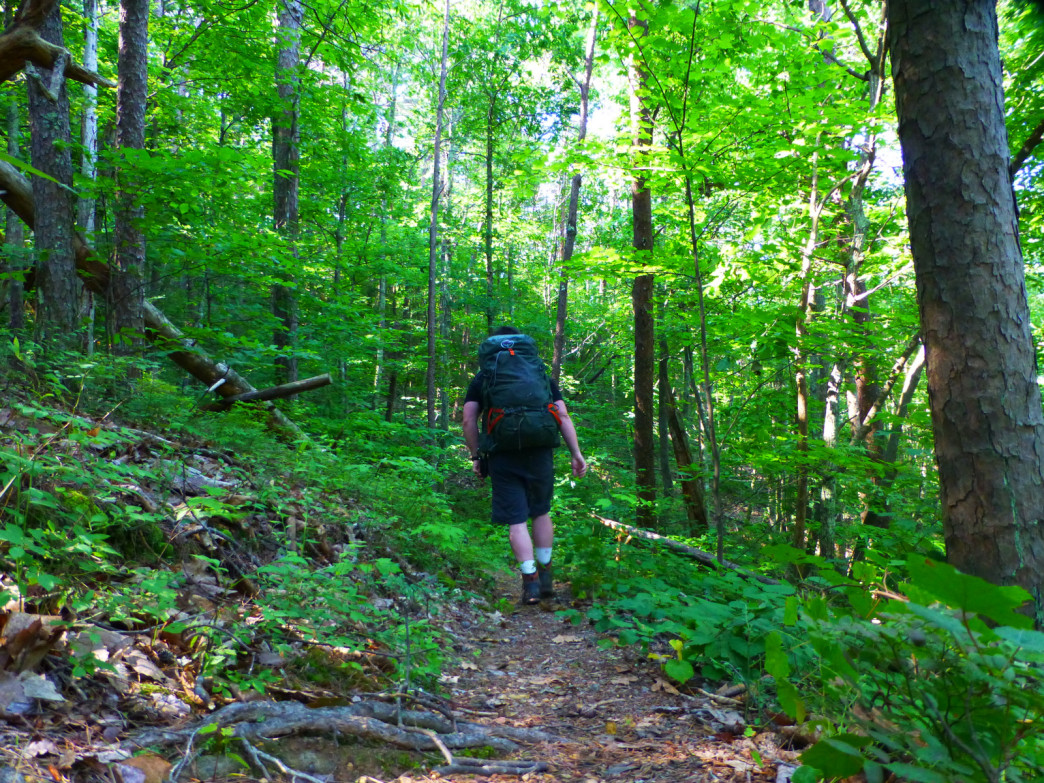 Backpacking the Pinhoti Trail in the Dugger Mountain Wilderness.