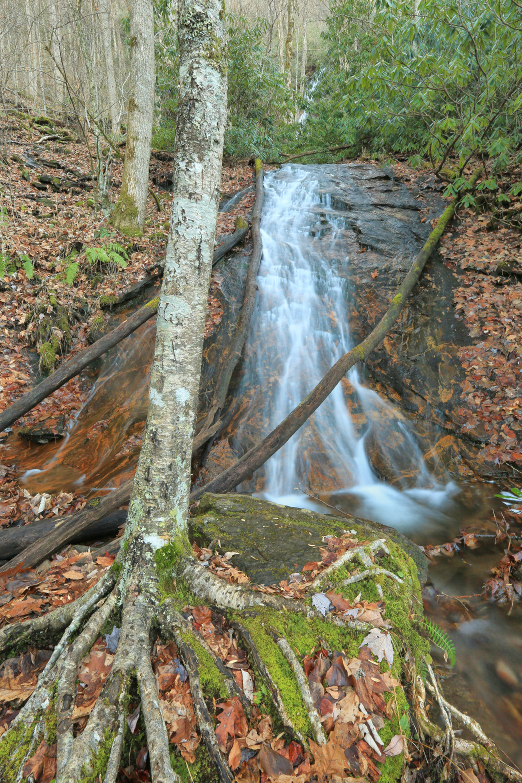 The 60-foot Rufus Morgan Falls is located just outside the town of Franklin.     Alan Cressler