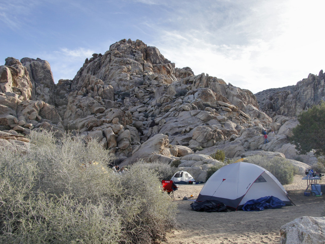 Thousands of routes make Joshua Tree one of the world's best climbing destinations
