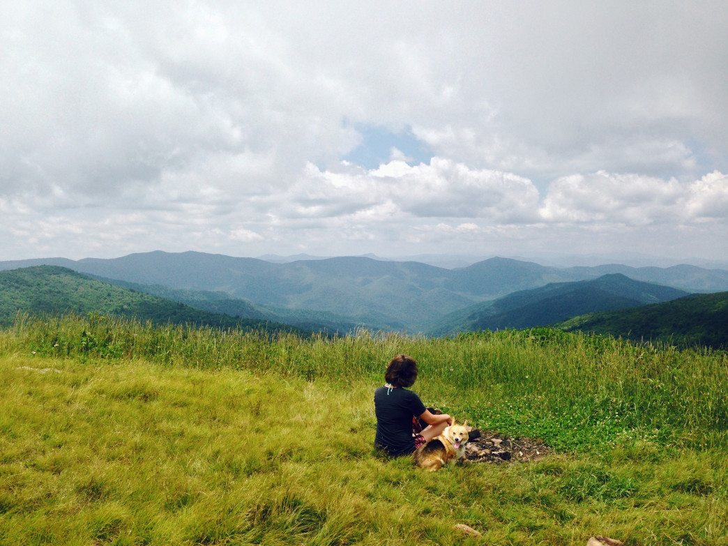 At the fire pit on the summit of Black Balsam Knob.