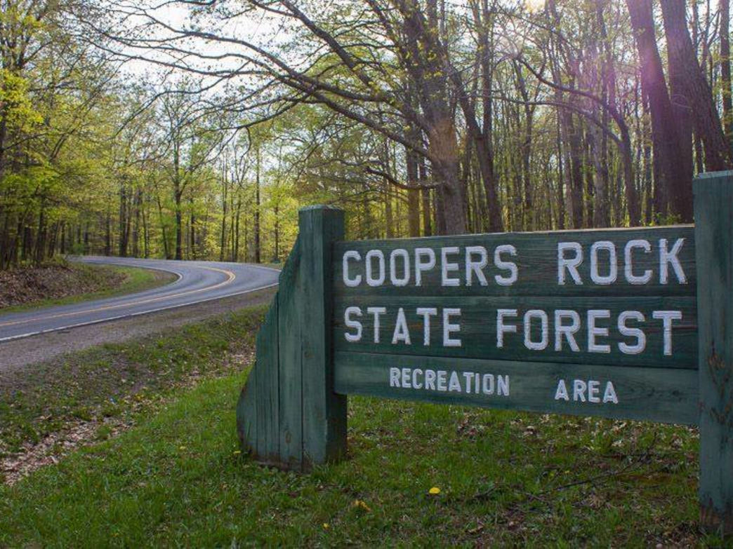 Coopers Rock State Forest- Welcome